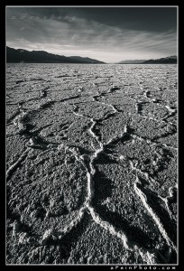 Polygons in salt at Badwater, Death Valley