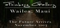 aFeinberg Gallery Wailea