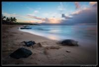 Endangered Hawaiin Green Sea Turtle at Ho'okipa beach on Maui during sunrise.