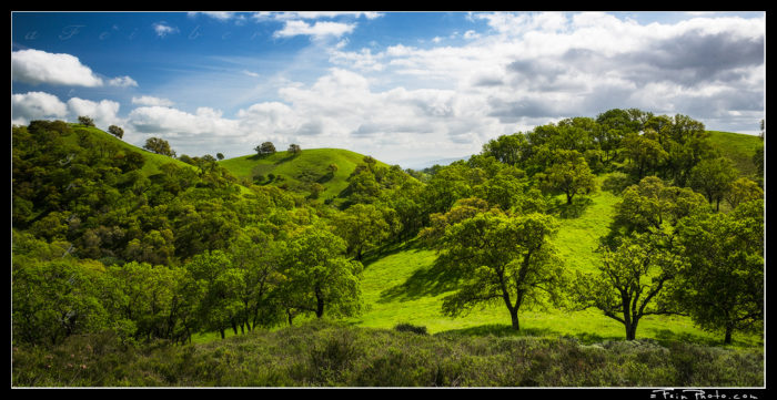 """Not So Devilish"" Having spent a lot of time in California over the last 4 years it was such a welcome (I'm sure for lots of people!) change to see things so green this year. This is an afternoon shot taken on Mt. Diablo, east of San Francisco. The greens, shadows and clouds were just too much fun to pass by! Thanks! aF"