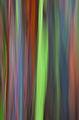 Rainbow Smear IV print
