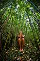 Bamboo Altar print