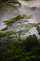 Mists Of Lemuria - In Technicolor print