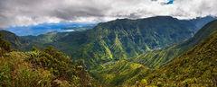 alakai swamp,feinberg,kauai,kilohana,panorama, princeville, hanalei, wainiha, green, lush, tropical