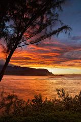 bali hai,feinberg,hanalei,kauai,orange,sunset,vertical
