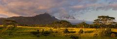 africa,albizia,feinberg,kauai,koloa,koloa pano,panorama, poipu, waialeale, kahili