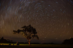 feinberg,horizontal,kauai,night,star trails,stars