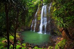 feinberg,horizontal,kauai,lush,paradise,wailua,waterfall