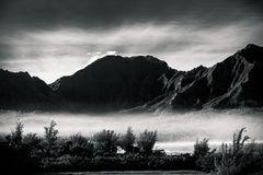 Winter's Mists