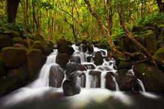 feinberg,green,hawaii,horizontal,kauai,lush,tropical,waterfall