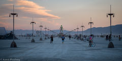 black rock city,burning man,burning man 2015,carnival of mirrors,feinberg