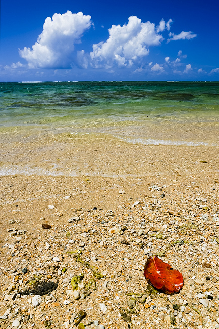 beach,blue,feinberg,kauai,red,vertical, photo
