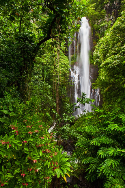 feinberg,green,hana,hana highway,lush,maui,vertical,wailua falls,waterfall, photo