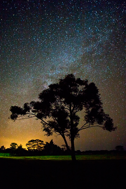 feinberg,kauai,milky way,silhouette,stars,vertical, kilauea, night, , photo