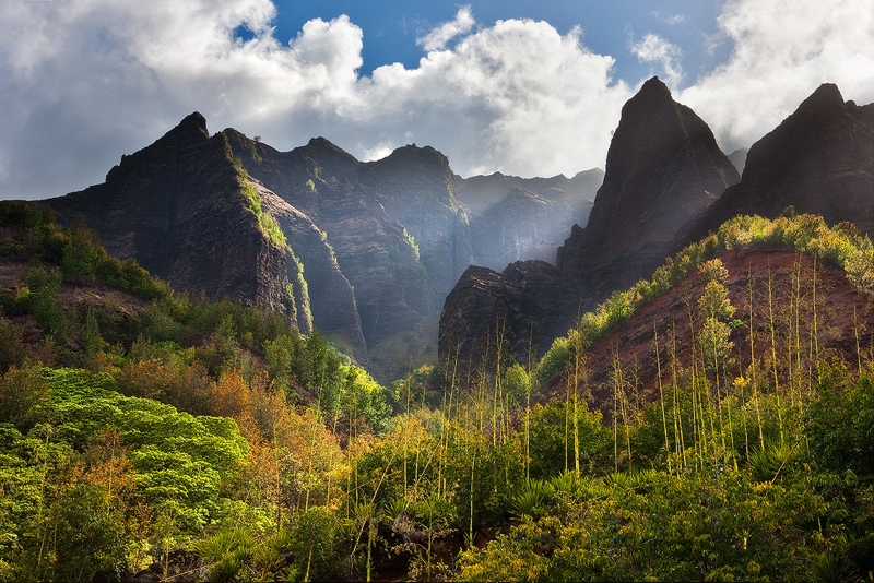 feinberg,horizontal,lush,mountain,waimea canyon, , photo