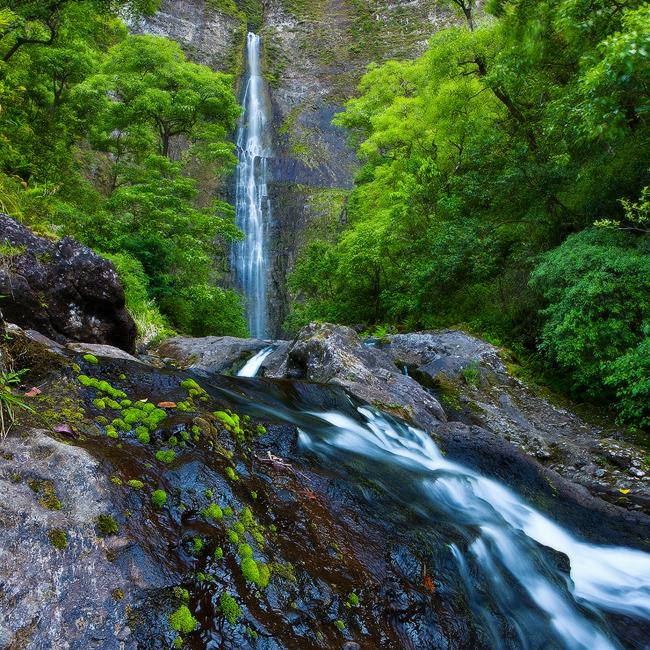 feinberg,hanakapi'ai,hanakapiai,jungle,kauai,lush,square,tropical,waterfall, photo