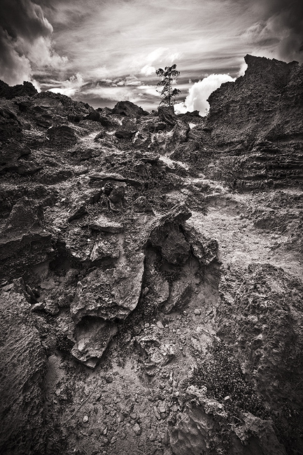 b/w,black and white,feinberg,mahaulepu,poipu,vertical, photo