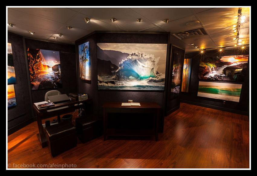 aFeinberg Gallery St Regis-Princeville
