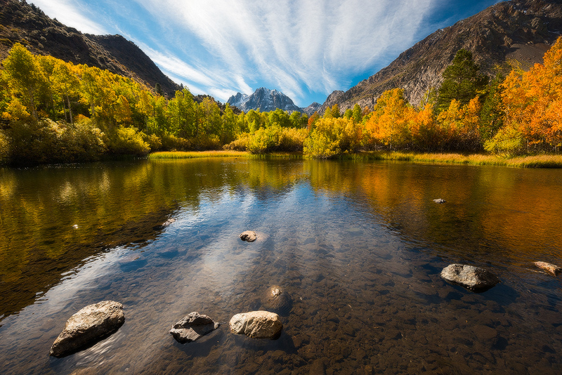 aspens,autumn,california,fall,feinberg,horizontal,june lake,sierra, photo