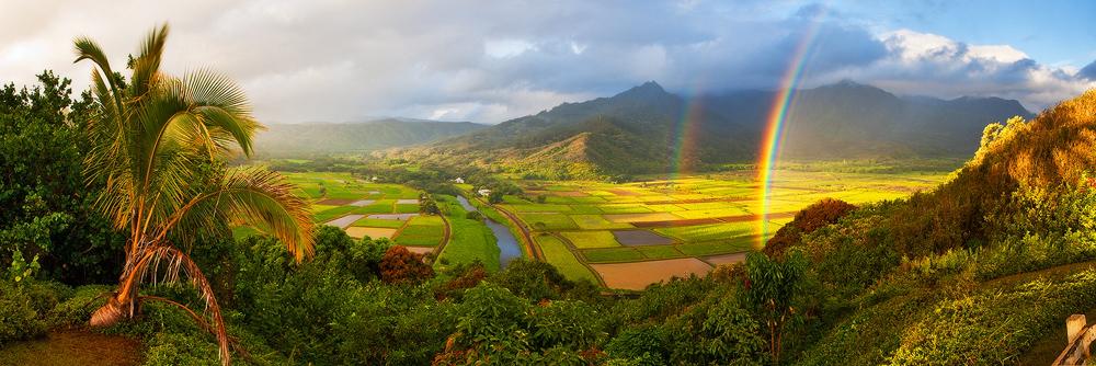 hanalei,panorama,paradise,princeville,rainbow,taro,, photo