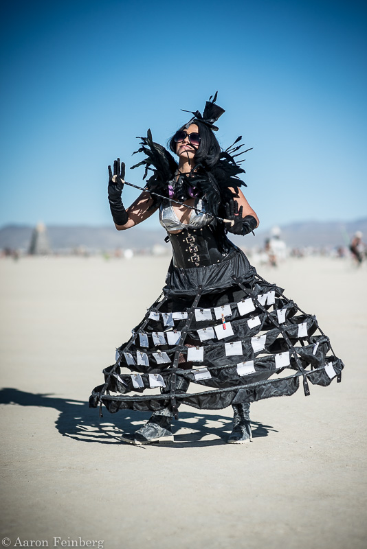 burning man,feinberg, photo